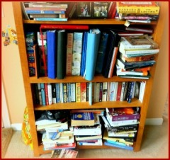 Overflowing Bookshelf