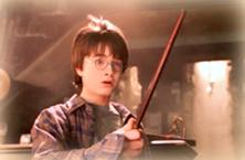 The wand choosing Harry