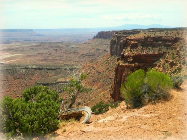 Majestic Canyonlands
