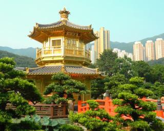 The Flying Chagall- Nan Lin Gardens against Buildings of Hong Kong