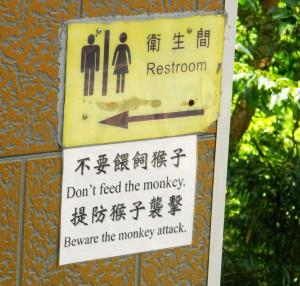 Whatever you do, don't feed the monkey!